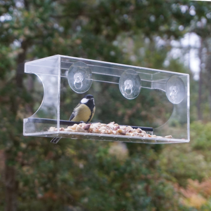 Large Bird Feeder for Windows