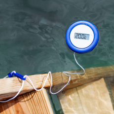 Digital swimming thermometer